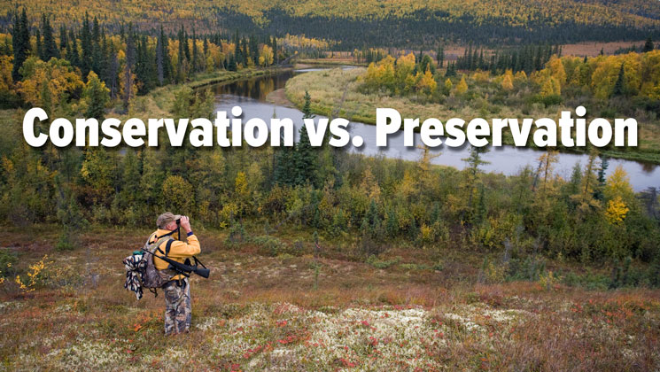Conservation vs. Preservation: What's the Difference?