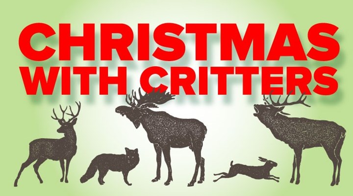 Christmas with the Critters