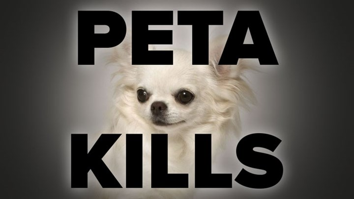 PETA Settles for $49,000 after Killing Girls' Dog