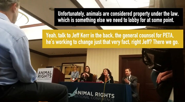 "HSUS Backs PETA's ""Personhood"" for Animals Ploy"