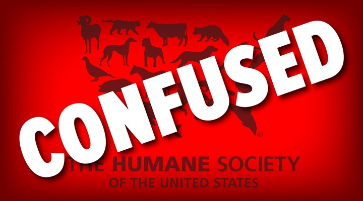Boone and Crockett Club Says HSUS Confused over Fair Chase