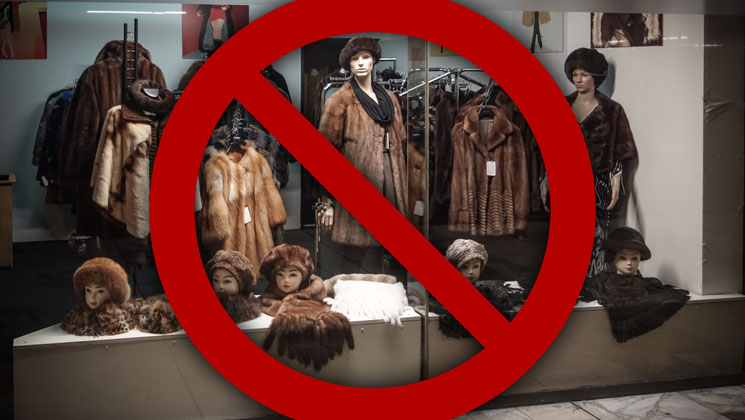 Norway Bans Fur Farming