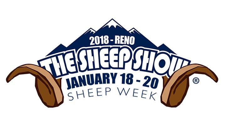 Synergy for Sheep: Why Attend the 2018 Sheep Show