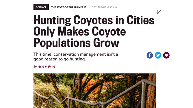 Slate Magazine's Position on Coyote Hunting is Laughable
