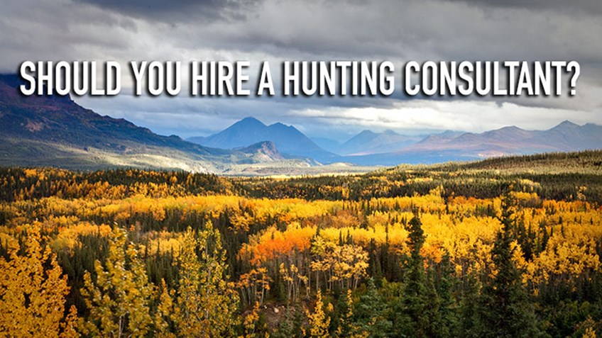 Should You Hire a Hunting Consultant?