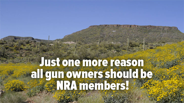 NRA Helps to Stop BLM from Closing Monument to Target Shooting