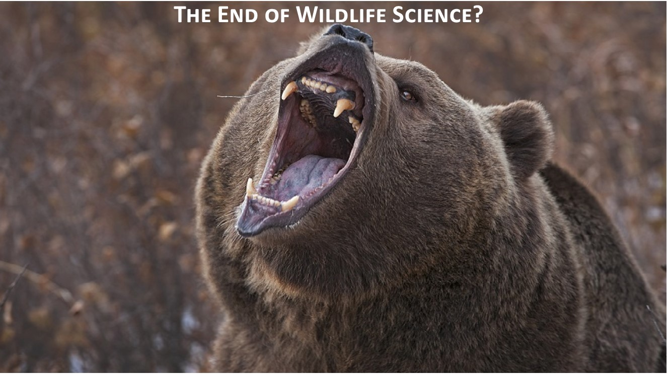 Federal Judge Ignores USFWS, Returns Grizzlies to ESA Protections