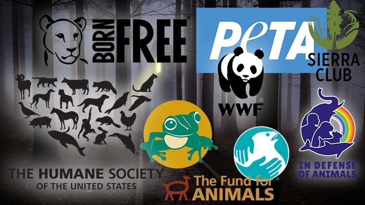 15 Scary Anti-Hunting Organizations to Watch