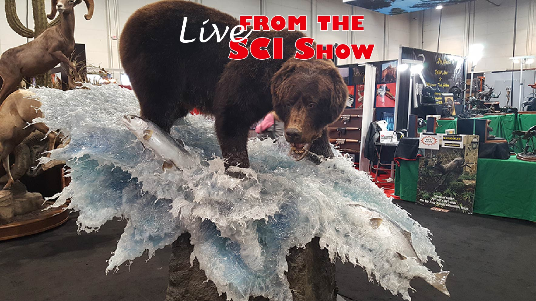 More Than 1,000 Things to Do at the 2019 SCI Show, Jan. 9-12