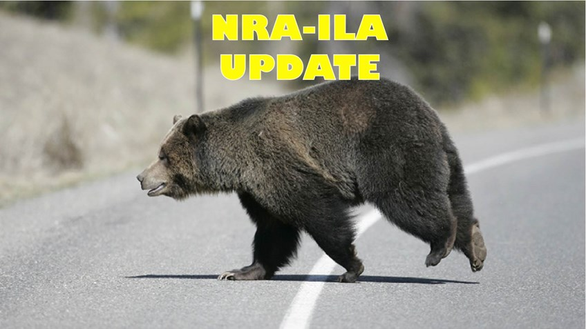 USFWS, NRA and SCI Appeal Closure of Grizzly Bear Hunt