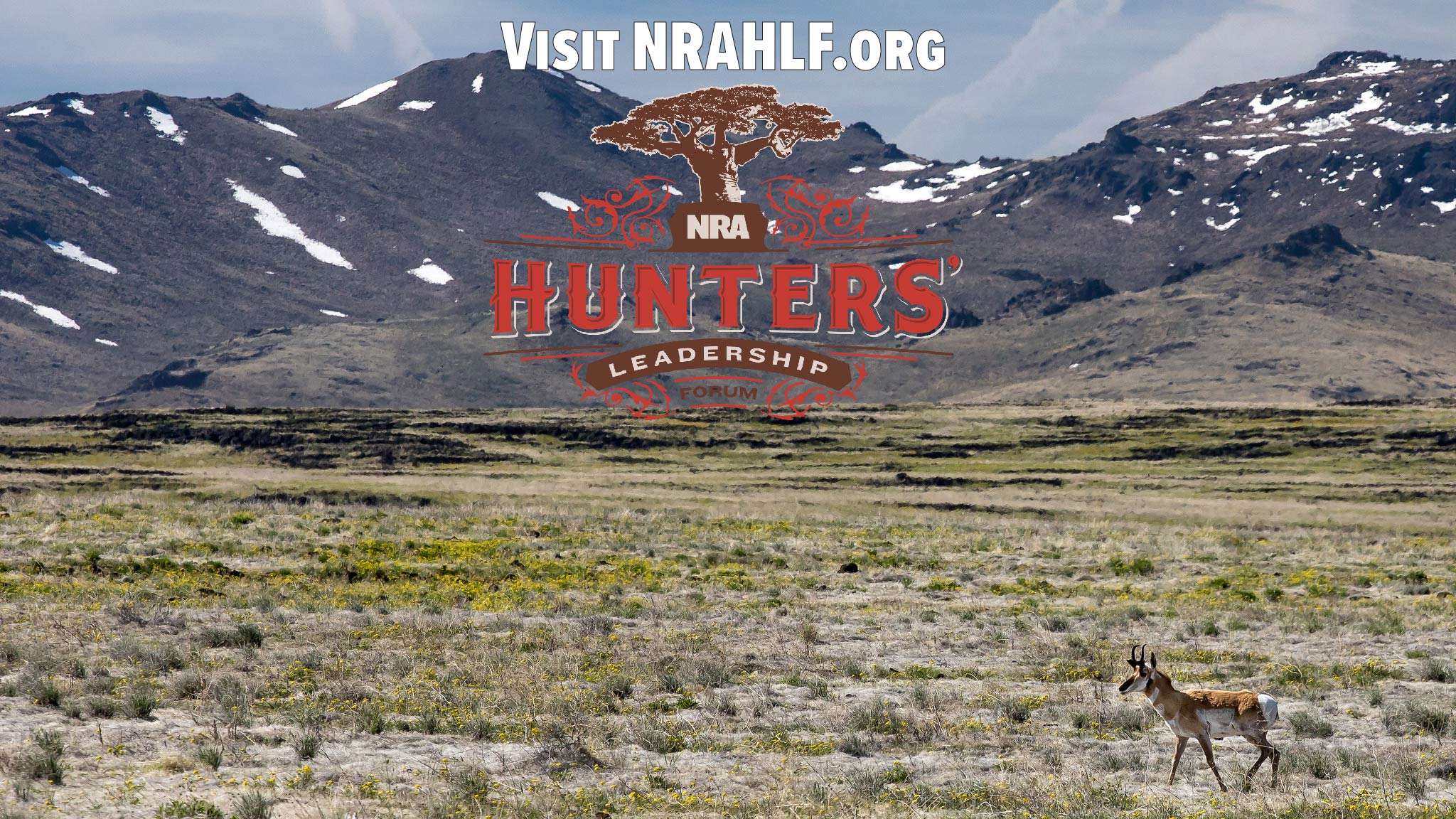 Why the NRA Hunters' Leadership Forum Site Is Hunters' Top Tool