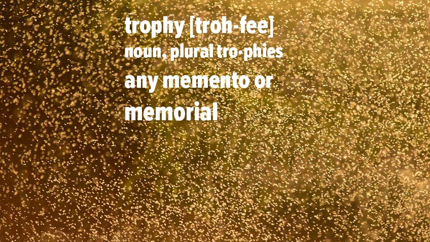 """Trophy"" Is Not a Four-Letter Word"