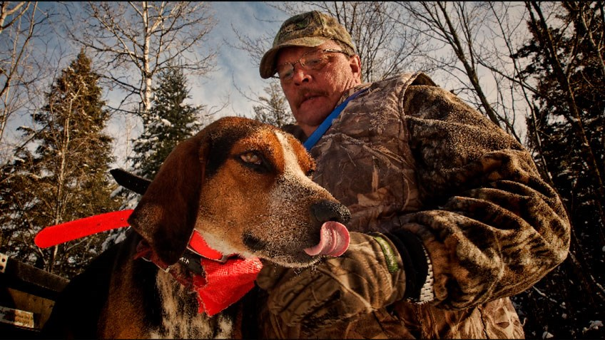 Understanding Hounds, Hunters and the HSUS