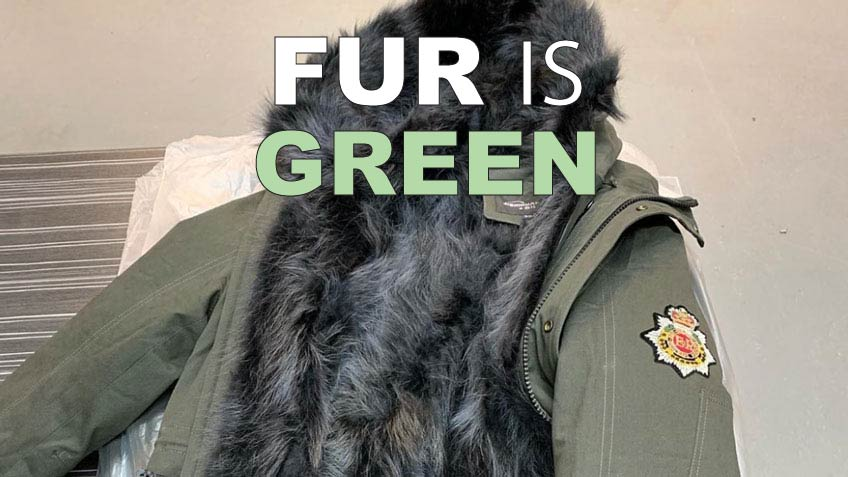 Wild Fur: The Green Alternative to Fake Fur