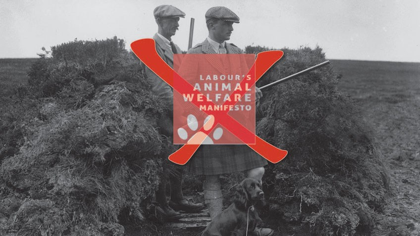 Open Assault on Great Britain's Hunting Culture