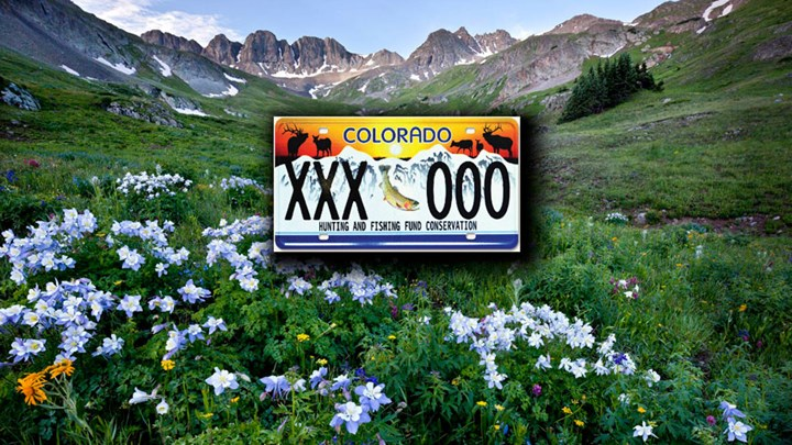 Colorado License Plate Funds Hunting and Fishing Opportunities
