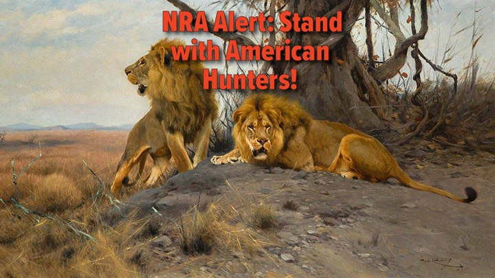 "NRA Pushes for a ""NO"" Vote on CECIL Act Today"