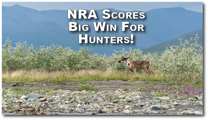 NRA-Defended Lawsuit Preserves Predator Hunting in Alaska