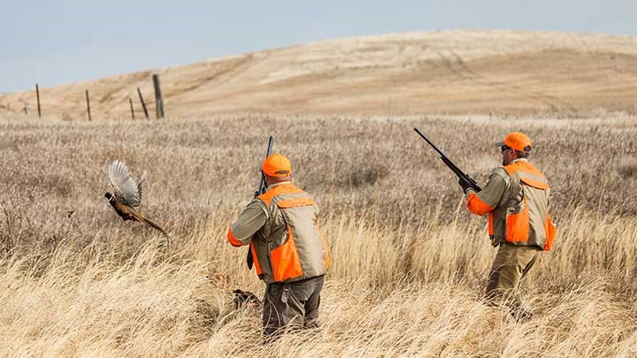 A Pandemic-Inspired Surge in Hunting Participation? Media Reports Indicate It!